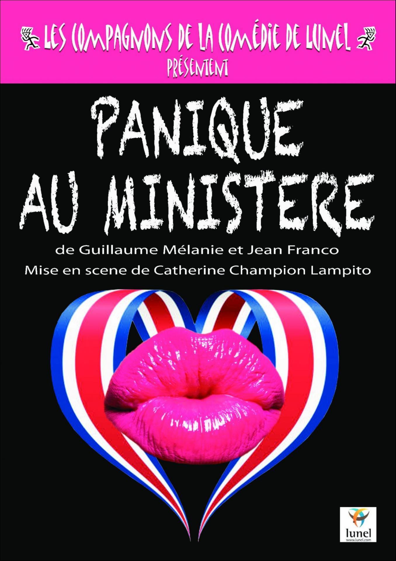 Affiche Panique au ministere